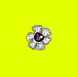 Luke Black - Amst-crop flower
